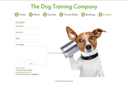 The Dog Training Compnay